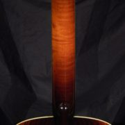 Collings Archtop AT Back Neck