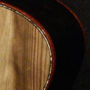 Ressler MJ Ancient Sitka and Af Blackwood 04616 (53)