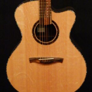 Ressler MJ Cutaway Bearclaw Spruce and Ziricote (3)