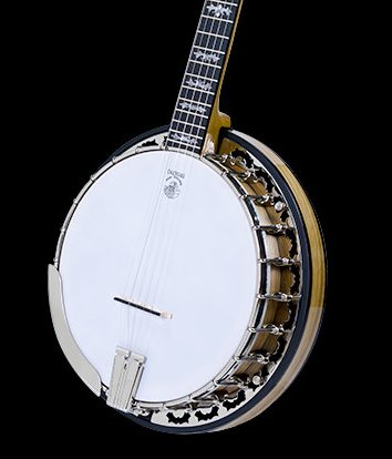 Deering 40th Anniversary Limited Edition Banjo