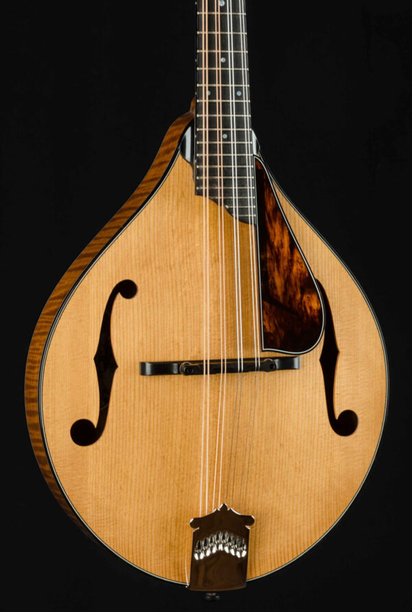 Collings MT2 Custom All Torrefied A Style Mandolin